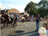 Horse Pulls Buggy in Parade