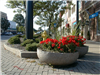 Planters in Downtown Wadsworth