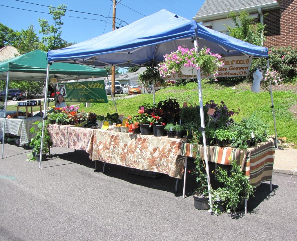 Booth Selling Plants and Homegrown Vegetables