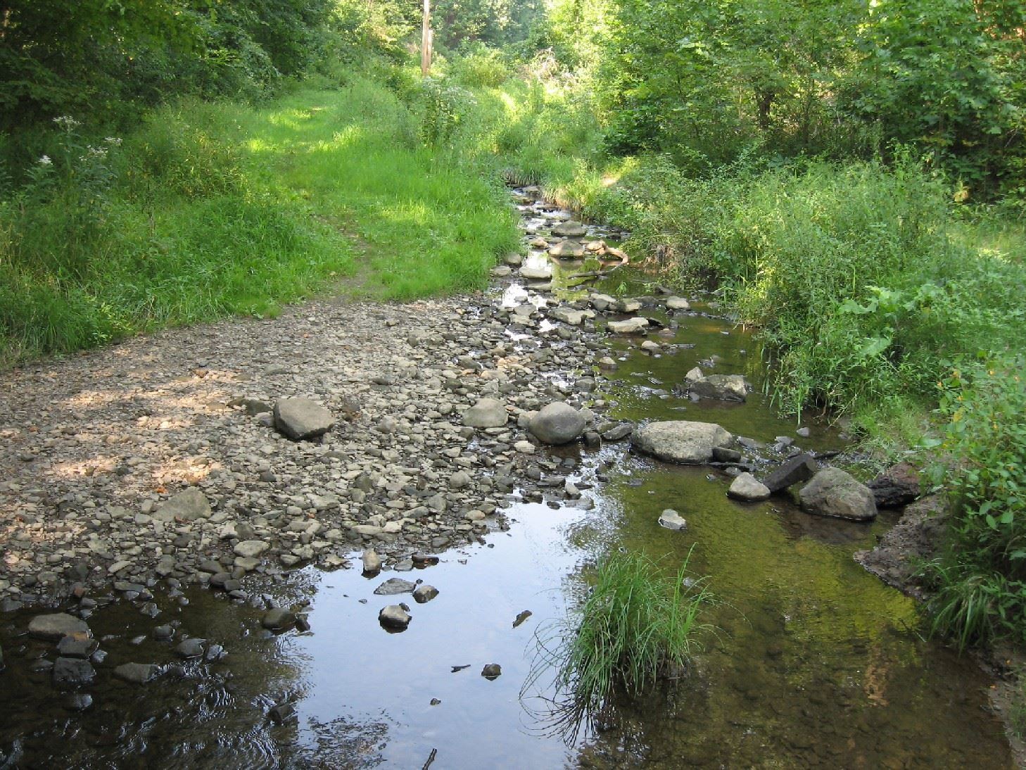 Holmesbrook Park Creek